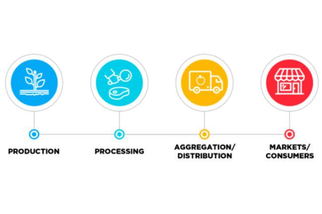 USDA-four-process-smaller.jpg