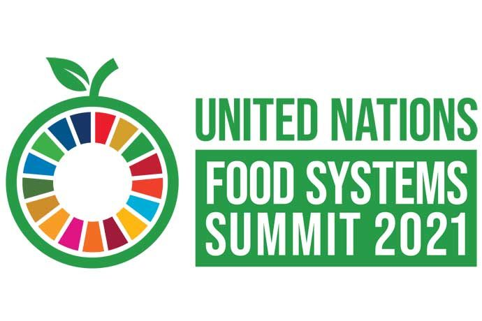 The logo for the United Nations Food Systems Summit
