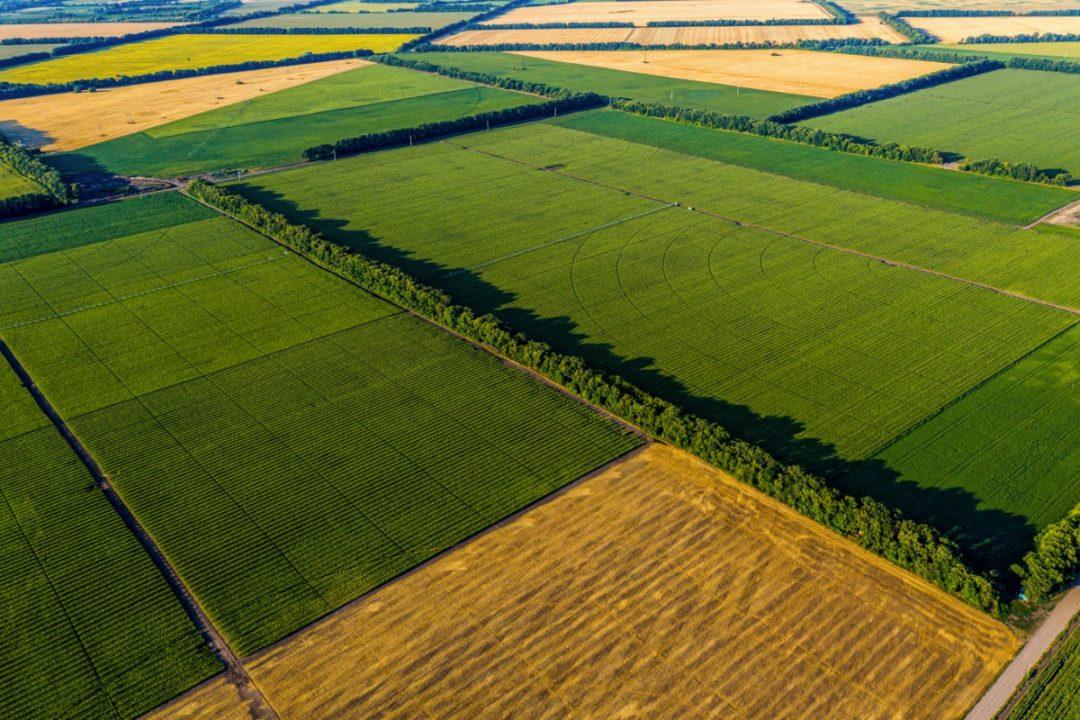 Farmland smaller