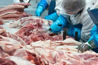 Porkprocessing lead smaller