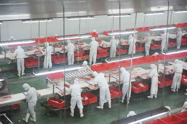 pork processing line