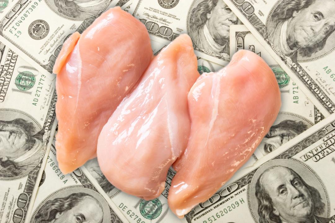 Money Chicken
