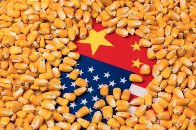 corn China USA