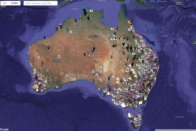 Aussie photo