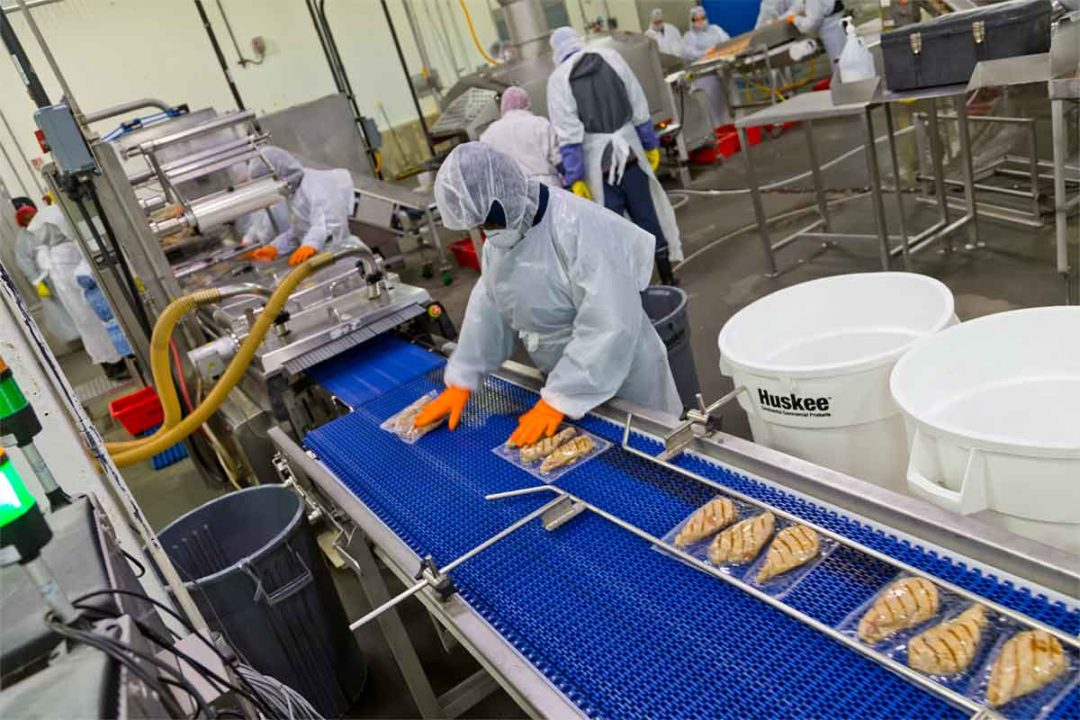 Detection technology systems are not a one-size-fits-all proposition for meat and poultry processors.