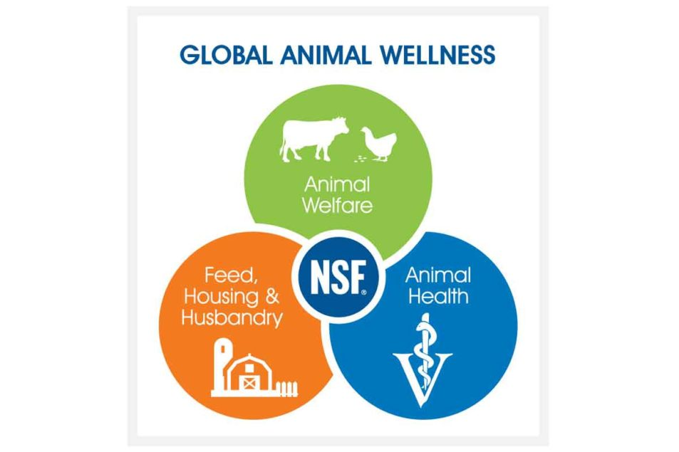 NSF International establishes animal wellness standards