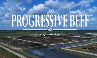 Progressive-beef-smaller