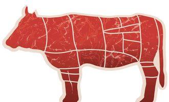 Meat-perspectives-sneak