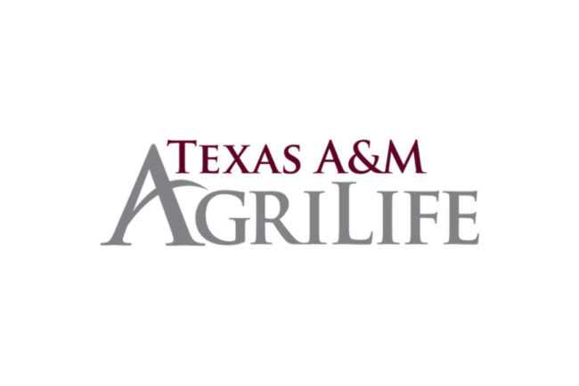 Texas A&M Ag