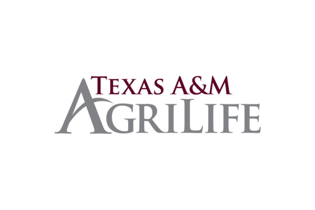 Texas A&M Ag