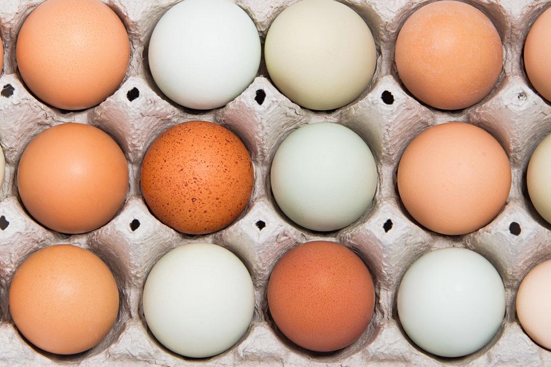 Eggs smaller