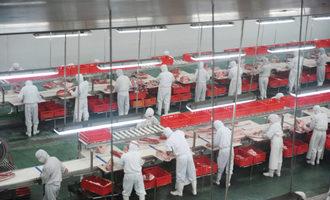 Meatprocessing lead