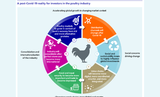 Rabobank poultry smaller