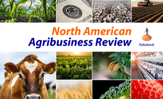 North american agribusiness review 2021 smaller