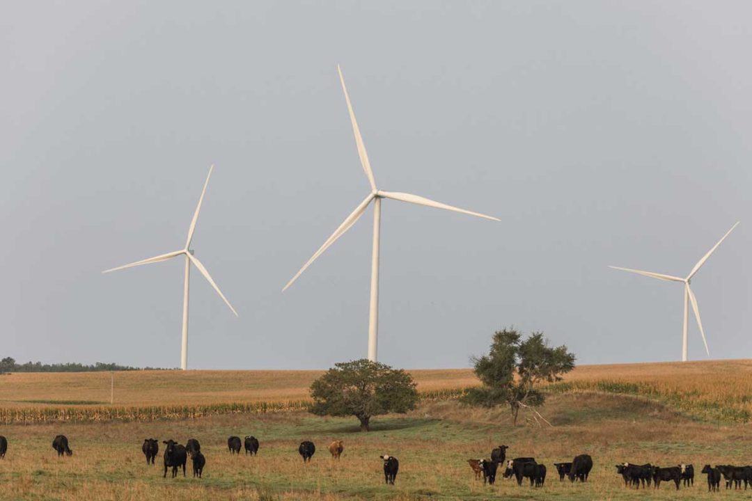 Hormel Foods Corp., Austin, Minn., agreed to a long-term commitment to purchase wind energy from Denmark-based Orsted's Haystack Wind project in Nebraska.