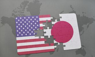 Japanusflagpuzzle lead