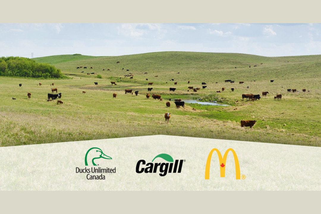 DUC Cargill