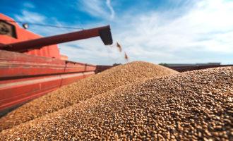 Grainprocessing_lead