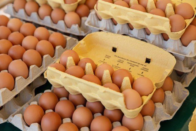 Eggcartons-smaller