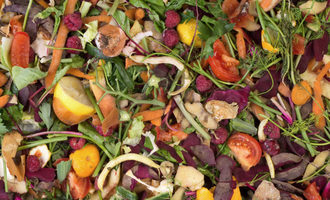 Food-waste_adobestock_56278192_e