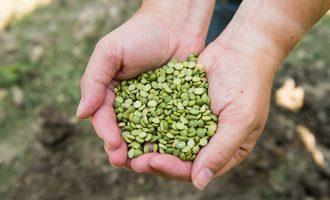 5ingredient tip source healthy food ingredients smallest