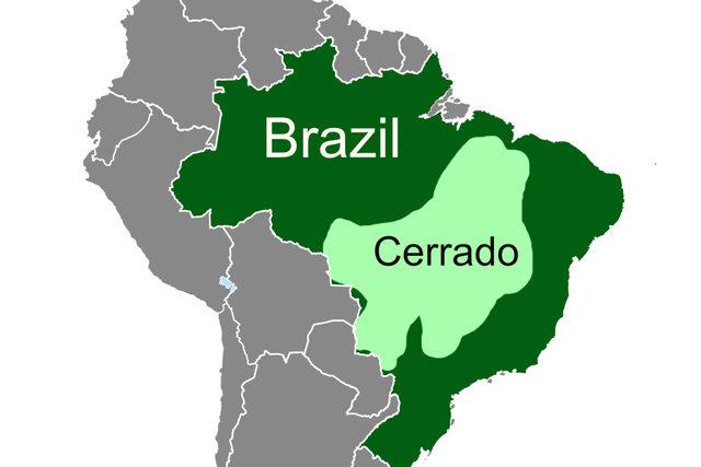 061719_mp_brazil-map_cargill