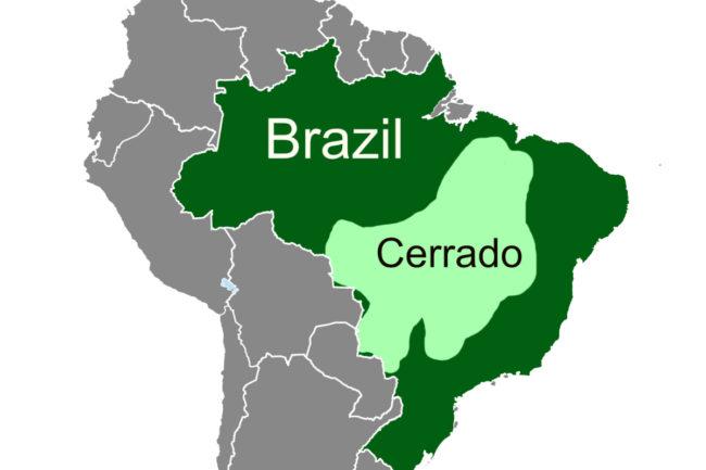 Cargill  Brazil