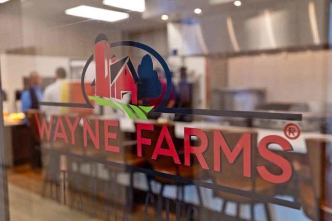 Wayne Farms smaller