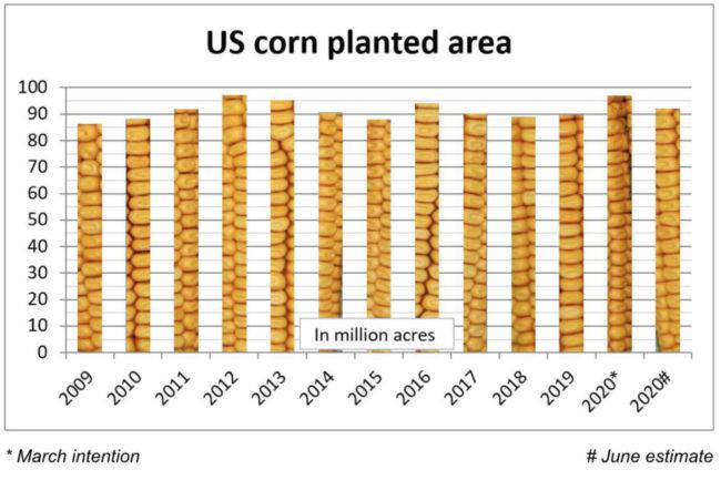 Corn smaller