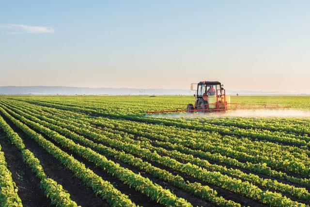 Soybeanfarm_lead
