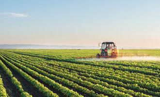 Soybeanfarm lead