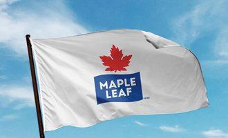 Mapleleaffoodsflag-small