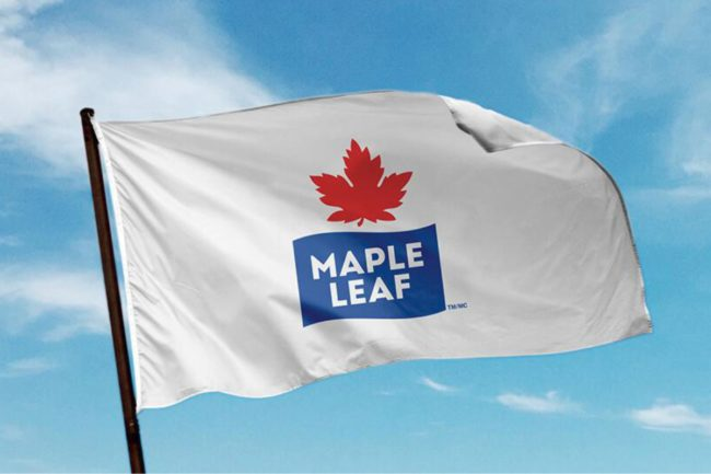 Maple LEaf small