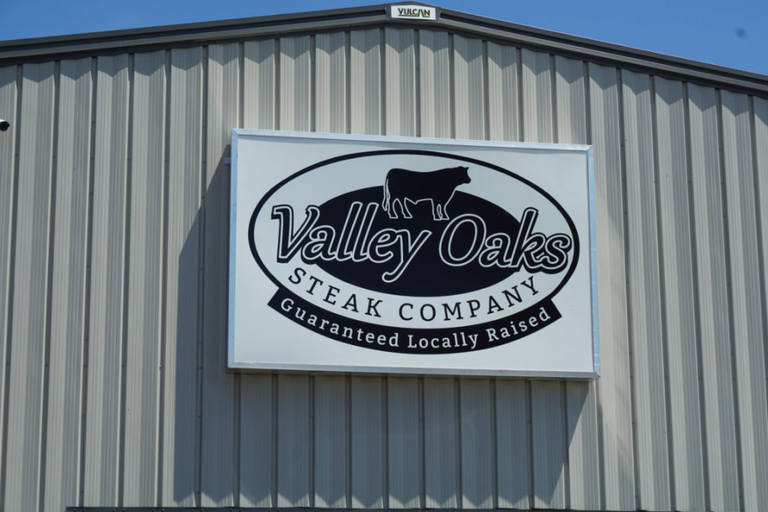 Valley Oaks