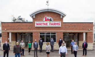 Wayne farms apprentice smaller