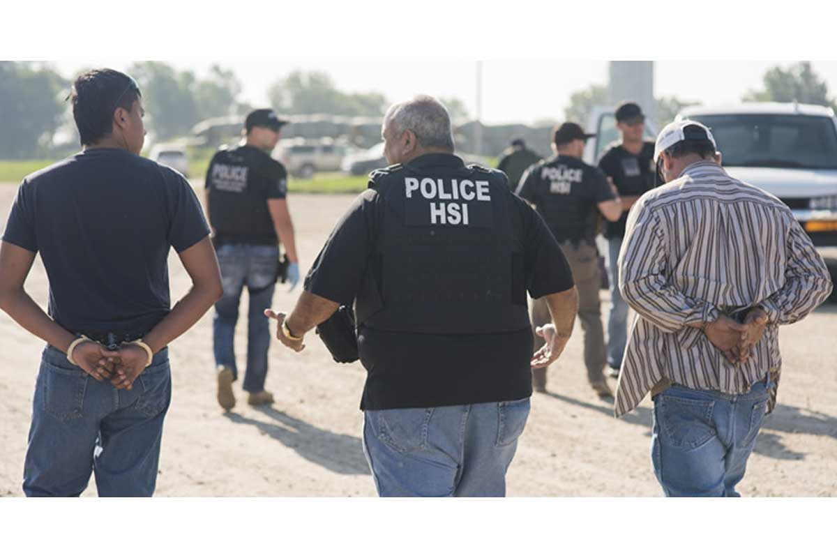 ice Arrests 2