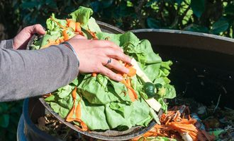 Composting_lead-small
