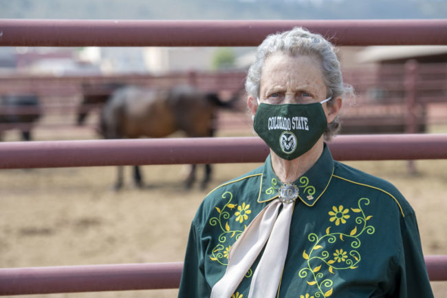 Temple Grandin talked about the precautions she takes to stay healthy in public and how she's managed to stay busy.