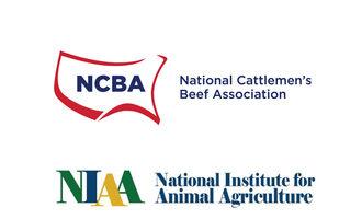 Ncba-niaa