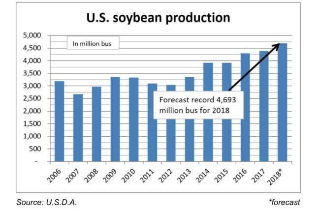 US Soybean