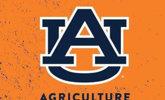 Auburn-ag-small