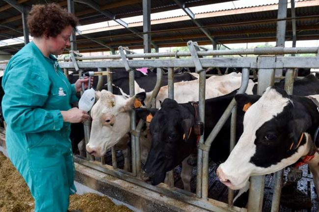 The European Parliament passed new laws limiting the use of antibiotics in farm animals.