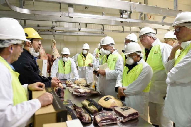 JBS Australia has announced a paddock-to-primals traceability system for its King Island Beef brand.