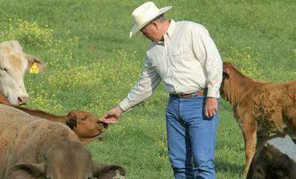 Animal-welfare-nolan-ryan