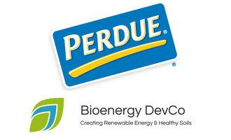 Perdue-bio-energy