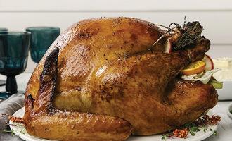 1126   turkey