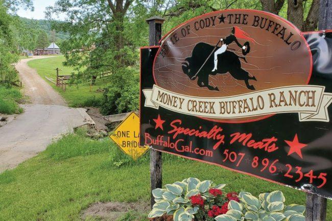 Buffalo Gal 1