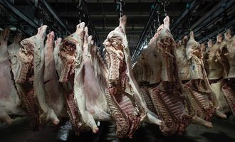 Food safety carcass hanging