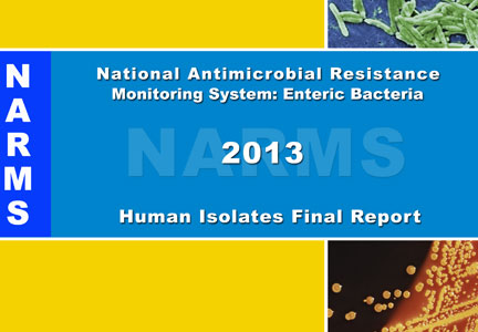 2013 NARMS Annual Human Isolates Report