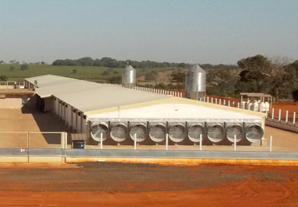 Breeder hen capacity has doubled at Cobb-Vantress Brasil operations.